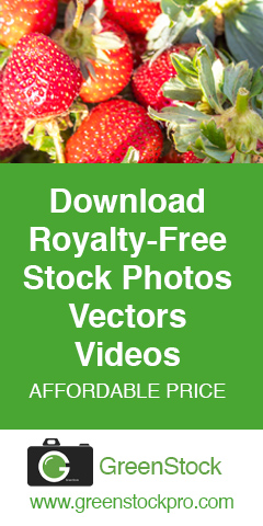 download stock photos
